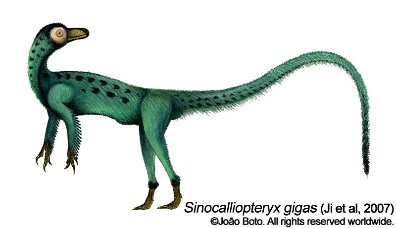 Sinocalliopteryx gigas by Sputatrix