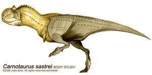 Carnotaurus sastrei Study