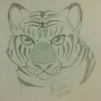 Tiggy Tyggy Sketch by VDragon-Creations