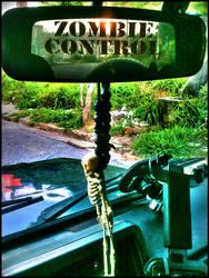 ZControl retrovisor