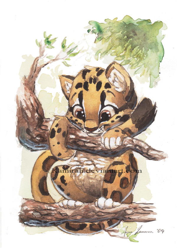Clouded Leopard The Ebestiary