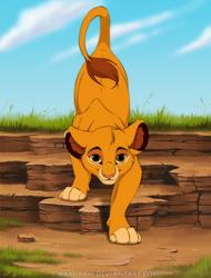 It's Simba by Kamirah