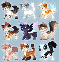 Cat Adopts 2019 [OPEN] 1 Left!