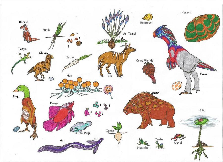 The Tundra Biomes of the World Elizabeth Kaplan