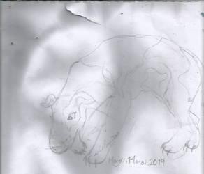 It's a DOG by CelineDGD