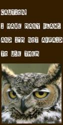 oWl 2 by bohemian-sam