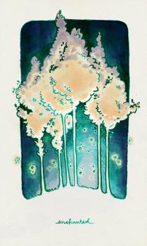 Enchanted by hooraylorraine