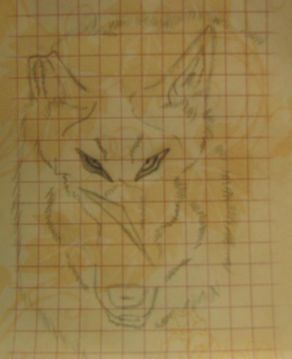 http://fc56.deviantart.com/fs37/i/2008/280/2/d/EnareRain__new_sketch_by_Chitori.jpg