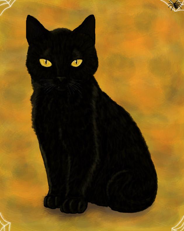 Black Cat by Meorow