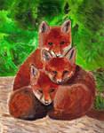 Bundle 'O Foxes by Meorow
