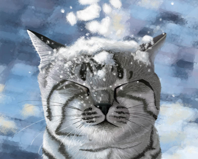 Snow by Meorow