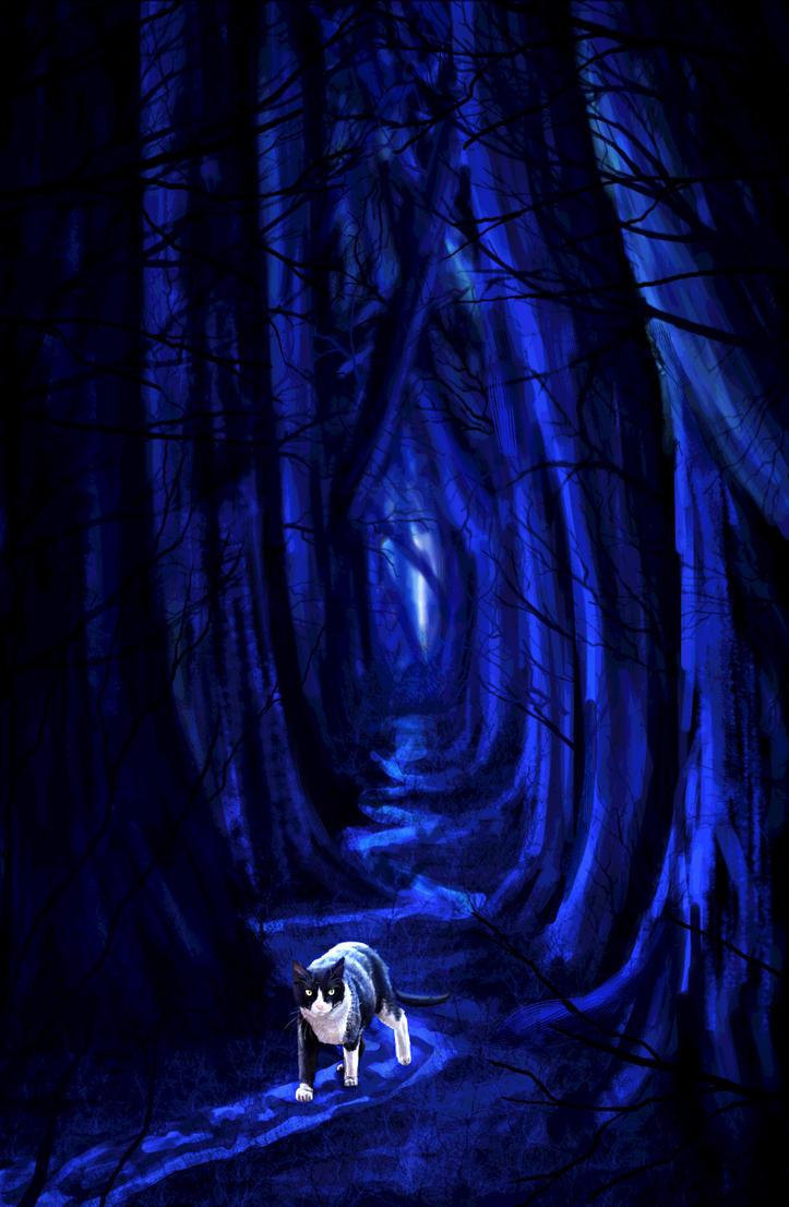 The Dark Wood by Meorow