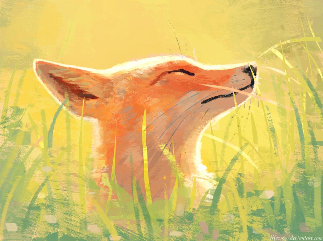 Sunlit Fox by Meorow
