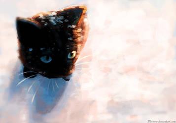 Snow Kitten by Meorow