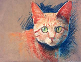 Pastel Cat by Meorow