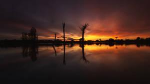 Un rouge profond du coucher de soleil by boodlemoo