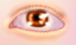 ArtemisiaAbsinthium's Profile Picture