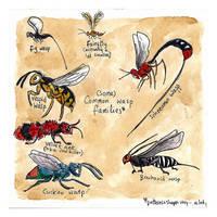 so many wasps by bonzaialsatian