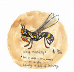 not a wasp