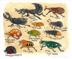 beetle parade by bonzaialsatian