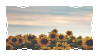Sunflower Sunsets Stamp [F2U] by peachkittens