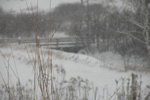 Winter on 117 002