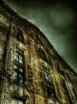 Urban Decay 7