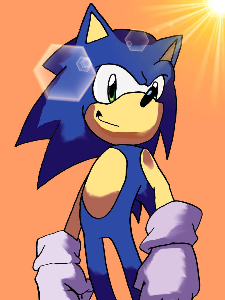 A famous Hedgehog by NiniBarbossa