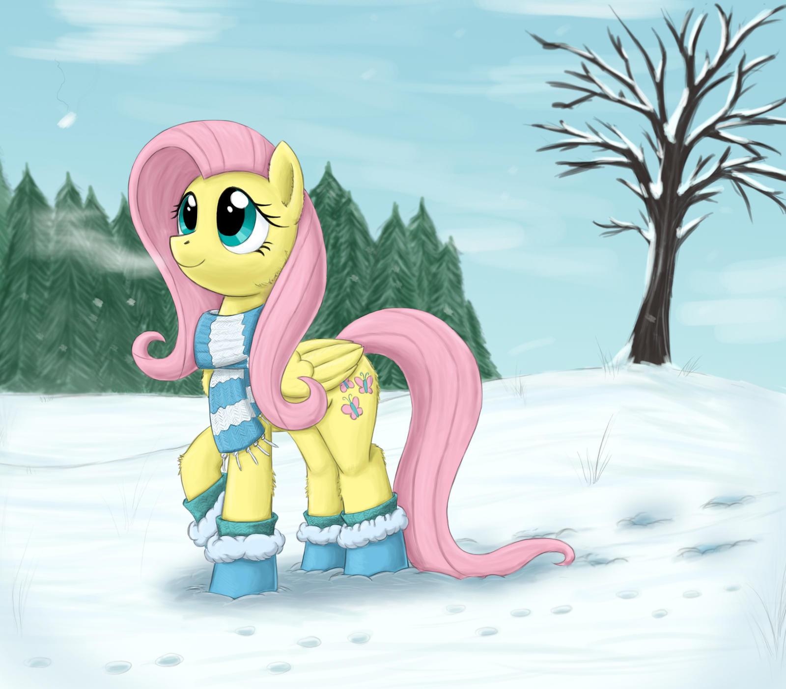 winter fluttershy by otakuap