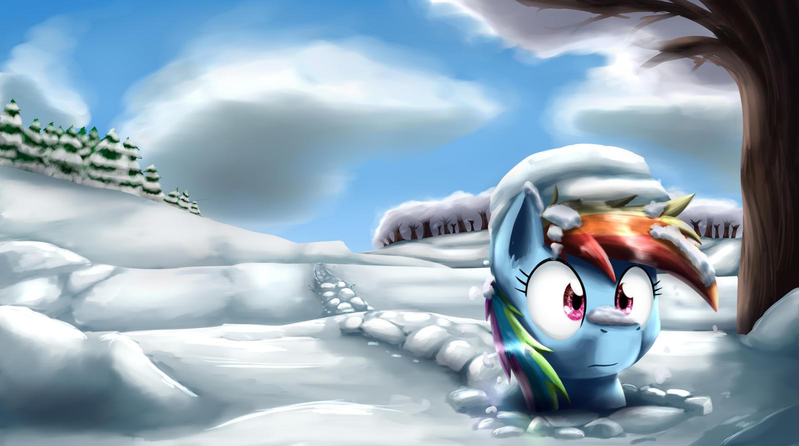 Dashie through the snow by otakuap