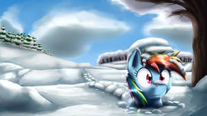 Dashie through the snow
