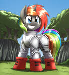Shino armor