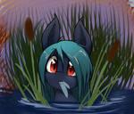 Waterbat