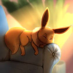 Eevee sleep