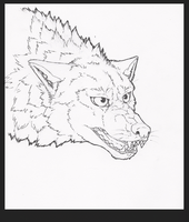 .:Snarling Wolf:. lineart by wanton-fox