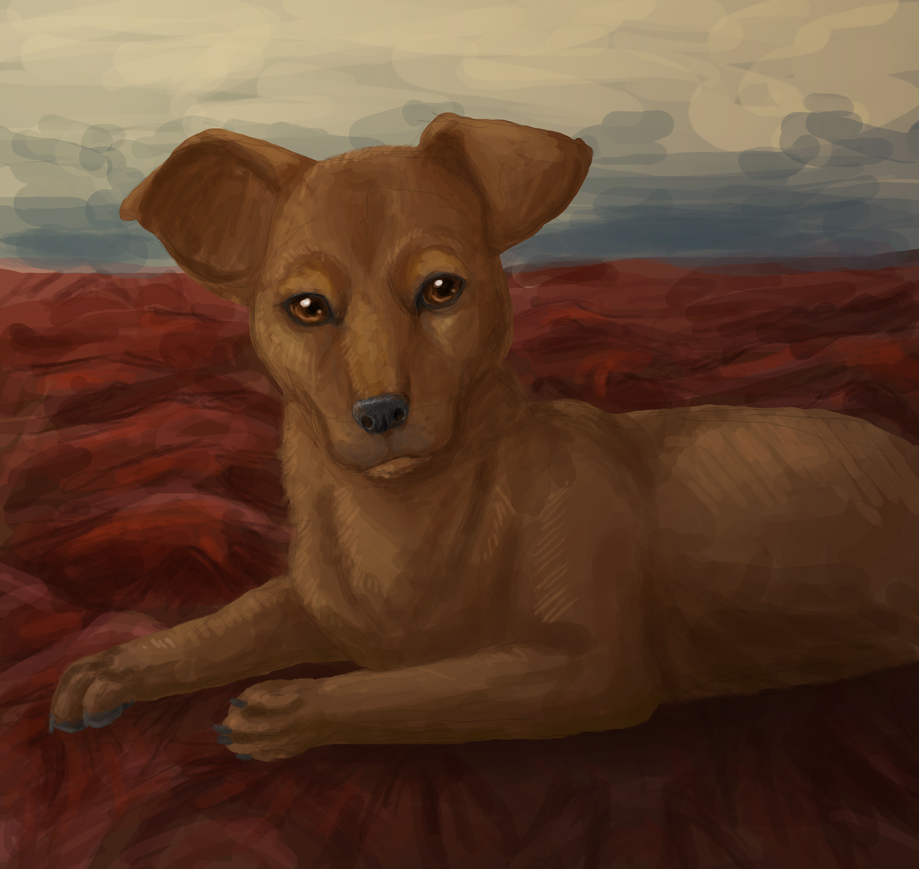Keera Speed Paint +video by wanton-fox