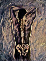 Spine Studies by SpiderJelly