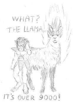 9000 Llama