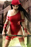 Geek and Sexy - Elektra by MorganaCosplay