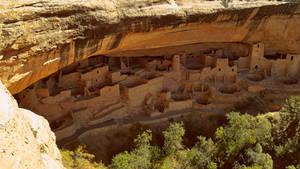 Cliff Palace / Mesa Verde