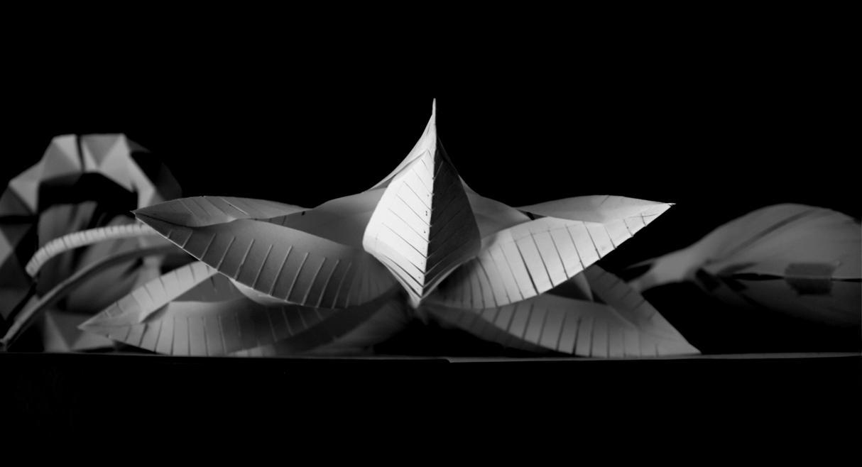 Fashion Architectural Designs