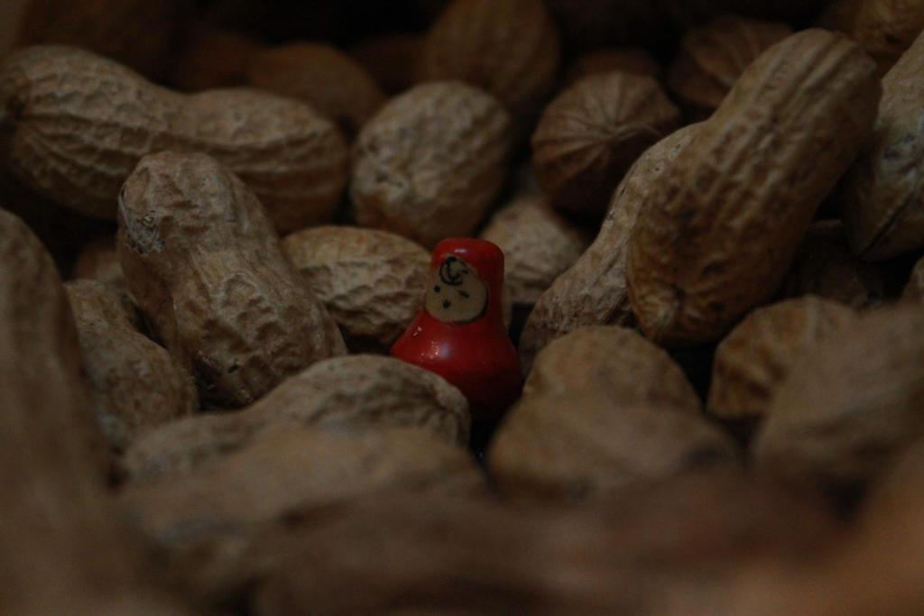 .......my nut friends....:)) by blackbird666999
