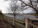 20201115 Fairhaven lake