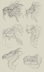 dragon heads - sketches
