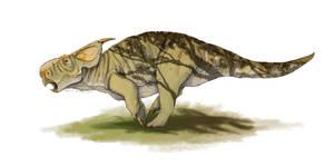 Style test - Pachyrhinosaurus canadensis