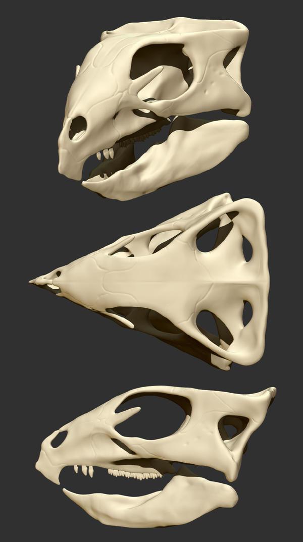 WIP - Aquilops americanus skull by FabrizioDeRossi