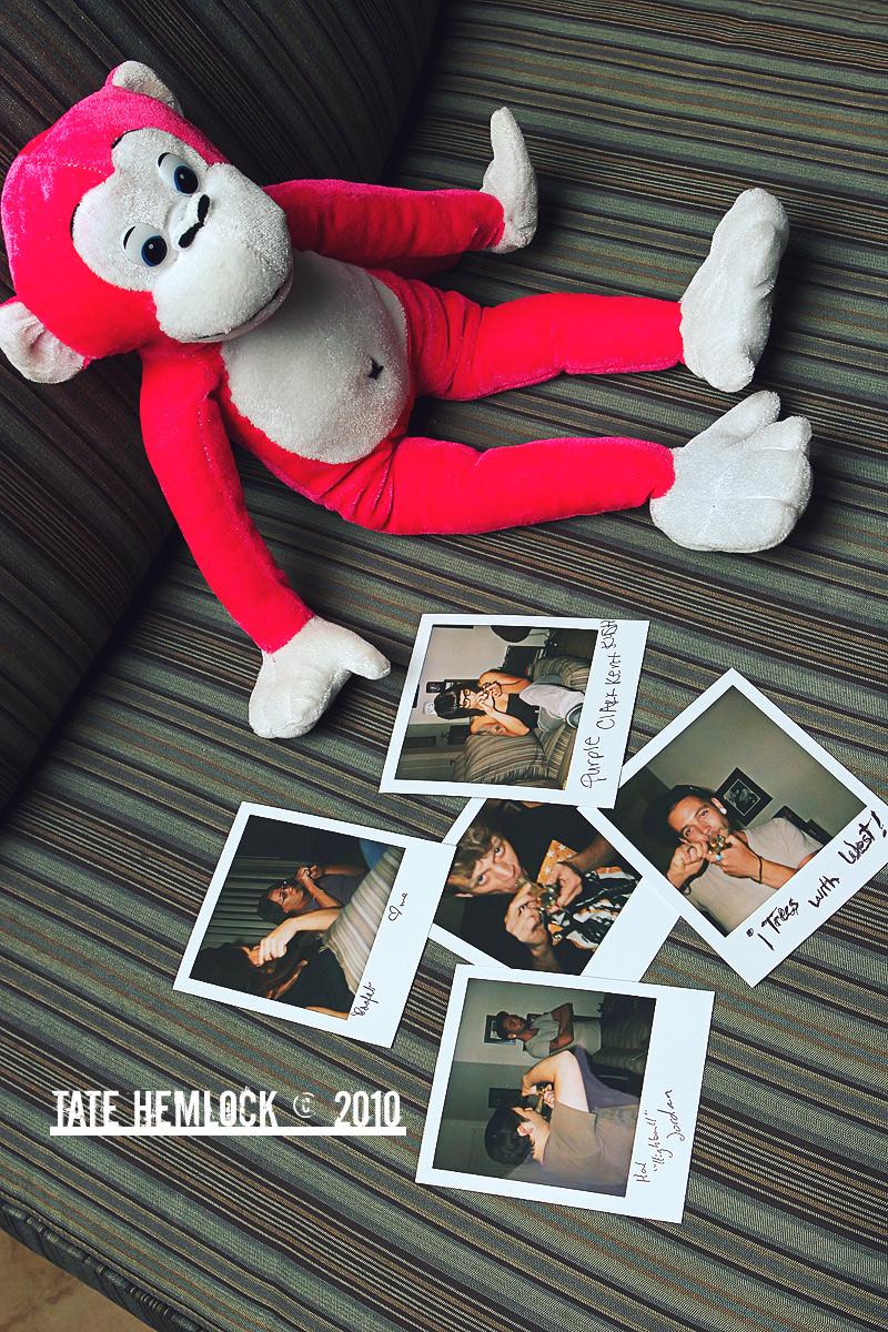 Getting All Tight Pink Monkey by tatehemlock