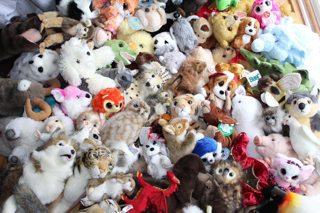 Animals 4 Me