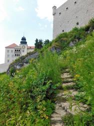 Pieskowa Skala Castle #2