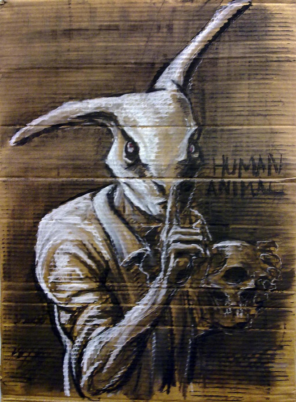 Human Animal by stolendata